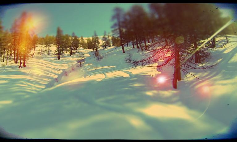 2014 22 GENNAIO – PLP Custom Woody Powder Snowboards